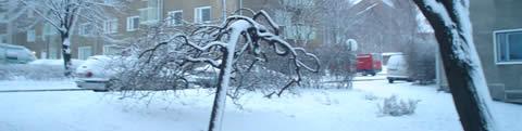 Lunta tuli es vino la nieve