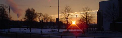 Sol anunciando la primavera