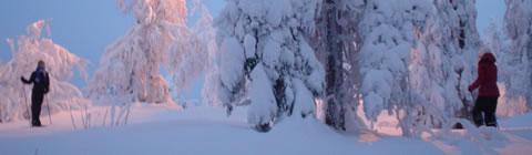 Snowboard:fin de temporada