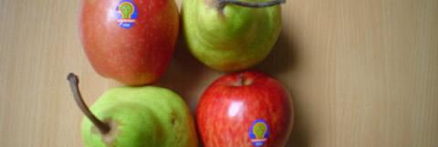 frutas chilenas a la vista